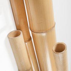 CAÑA DE BAMBÚ La Caña de Bambú es ideal para proyectos de decoración, jardinería y vallado. Ofrece un toque exótico a tu jardín o terraza. Disponible en diferentes diámetros y longitudes. #CañadeBambú #Bambú #BambooCane #BambooSlat Bamboo Canes, Going Gray, Projects, Crafts, Terrace, Budget
