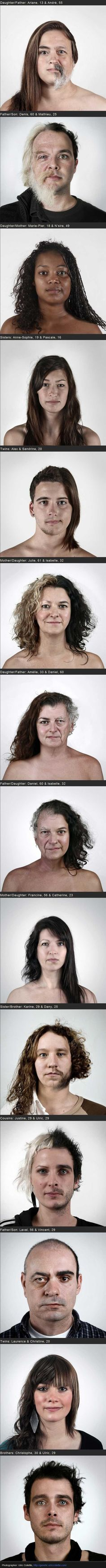 Genetics.  this is a little weird but really cool