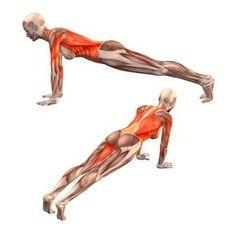 What Is Ashtanga Yoga? Understanding the Methods - Yoga breathing Kundalini Yoga, Ashtanga Yoga, Yoga Meditation, Vinyasa Yoga, Yoga Pilates, Yoga Moves, Yoga Exercises, Yoga Fitness, Yoga Muscles