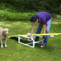 Agility course!!!! Photo: Wendell T. Webber thisoldhouse.com from How to Build a Pet Agility Course