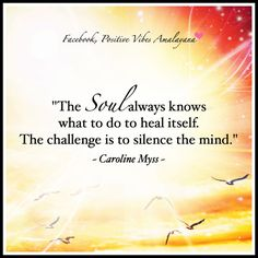 """The soul always knows what to do to heal itself. The challenge is to silence the mind.""   ~ Caroline Myss  <3"