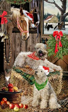 """New for 2013Soft Coated Wheaten Terrier Christmas Holiday Cards are 8 1/2"""" x 5 1/2"""" and come in packages of 12 cards. One design per package. All designs include envelopes, your personal message, and choice of greeting. Select the inside greeting of your choice from the menu below.Add your custom personal message to the Comments box during checkout."""
