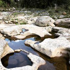 💙 A ver si tú tb puedes verlo.. 💛 📍 McLaren Falls ~ Tauranga, New Zealand