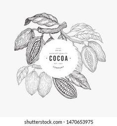 Hu Chocolate, Chocolate Packaging, Banner Template, Packaging Design, Cocoa, Templates, Chocolates, Animals, Coffee