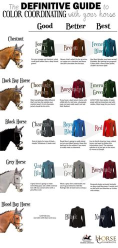 Match you outfit with your horse ! Color code to look good in the show ring and in the paddock!