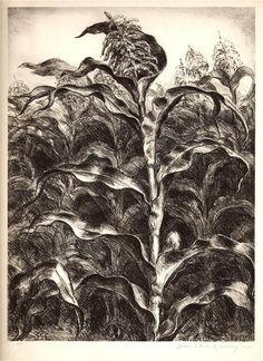 John Steuart Curry, Corn, 1939.