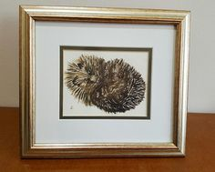 Hedgehog Original Watercolour Painting - Cute curled-up hedgehog framed 'Miniature'. Ideal Unique Art Gift for Nature or Animal Lover