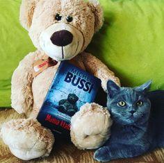 Book bookstagram cat britishcat teddy teddybear bear
