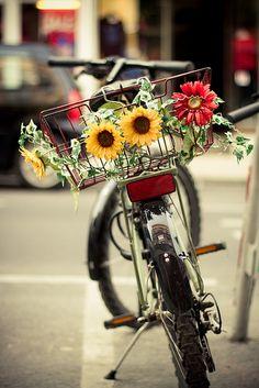spring bike rides