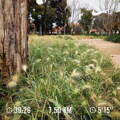 Lunch time recovery run   Accomplished the pace and distance goal  #run #runner #run4fun #runlife #running #runnerscommunity #instarunning #instarunners #somosrunners #workout #corrida #correr #nike #nikeplus #nikeplusrunners #healthylife #lifestyle #runaddict #runeveryday #justdoit #cidaderunit #runtoinspire #fitlife #runchat #seenonmyrun #worlderunners #nrc #recoveryrun