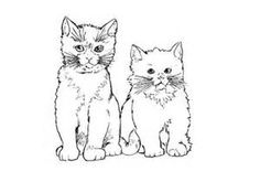 cat kittens drawings of - Yahoo Image Search Results