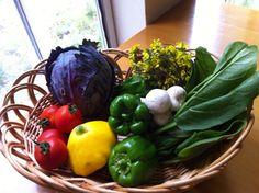 自家菜園と 近隣生産者が作る野菜  盛夏の頃の野菜たち