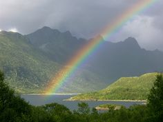 Rainbow By Ghengis Khan Desktop Wallpaper Design 1600x1200 Pixel