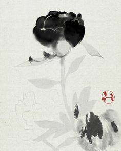 Peony Japanese Painting, Chinese Painting, Chinese Art, Large Painting, Ink Painting, Watercolor Paintings, Plant Pictures, Old Pictures, Zen Art