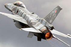 """""""Polish Tiger F16C"""""""