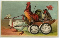 Happy Thanksgiving! by Crafty Dogma, via Flickr