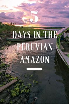 Jungle walks, piranha fishing, searching for caimans, tarantulas and sloths - read about our epic adventures during our 5 days in the Peruvian Amazon.