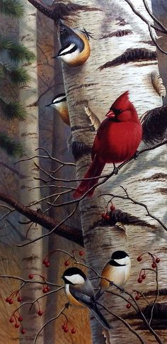 Cardinals and Chickadees are perched on this birch tree in Cynthie Fisher's bird print Unannounced Visitors II. Pairs with Unannounced Visitors I. Comes in an open edition unframed image size of by francisca All Birds, Little Birds, Pretty Birds, Beautiful Birds, Cardinal Birds, Bird Pictures, Wildlife Art, Bird Prints, Decoupage