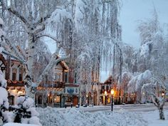 Leavenworth, Washington.  This quaint little German town was on the Travel Channel as being one of the most Christmasy towns in the usa! I never got a chance to visit, this is on my bucket list!