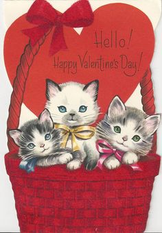 Valentine kittens in basket