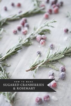 Sugared Rosemary Sprigs - Ella Claire - Jessica Dean - Sugared Rosemary Sprigs - Ella Claire Make beautiful sugared rosemary and cranberry garnish for your Christmas treats and cakes to add an elegant and edible holiday decoration to your parties - Christmas Cake Decorations, Christmas Cupcakes, Christmas Sweets, Holiday Cakes, Christmas Kitchen, Christmas Cooking, Noel Christmas, Christmas Goodies, Holiday Desserts