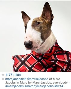 Neville Jacobs sporting the now trend on #instagram. #marcjacobs