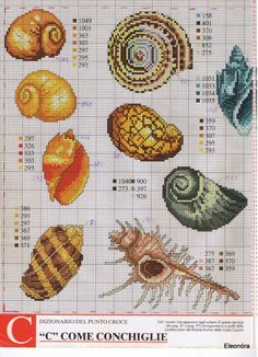 <3 conch shell cross stitch