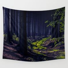 #society6 #art #forest #woods #tapestry #photo #shop #print #canvas #clock #iphone #iphonecase #bag #case