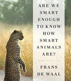 Are We Smart Enough To Know How Smart Animals Are? PDF
