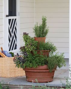 Don't miss out on fresh herbs (or pay a lot for them at the market) just because you don't have a big yard. Situate this compact herb garden in a sunny spot near the kitchen door for easy snipping.