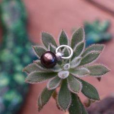 black-pearl.jpg (400×400)