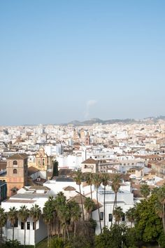 Malaga, the great unknown - Pathport You Know Where, Modern City, Get Directions, Malaga, I Fall In Love, The Locals, Travel Guides, Paris Skyline, Dolores Park