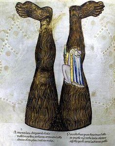 Lucifero Capovolto Codex