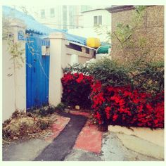 .@l3yul__ | #today #blue #red #동네 | 2013 12 02 /