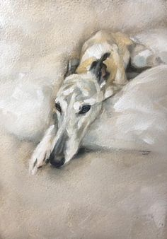 jbrunnart I had to make it up to Willow and paint him properly 😄. Not a Christmas bauble in sight 😜! Now I need to do the same for Bella. Dog Breed Names, Dog Breeds, Greyhound Kunst, Royal Canin Dog Food, Eagle Painting, Dog Grooming Clippers, Boy Dog, Cool Dog Houses, Scrappy Quilts