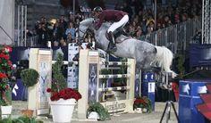 Eurocommerce California--what a pretty horse!