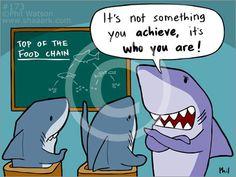 shark science - Google Search