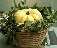 Star im Herbst: der Kürbis - Herbstlich dekorieren 6 - [LIVING AT HOME]