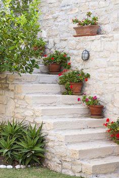 A mediterranean garden in Crete