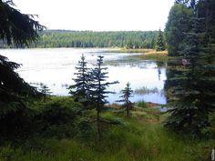 Jizerské hory. Přehrada Černá Nisa Mountains, Nature, Travel, Pictures, Naturaleza, Viajes, Destinations, Traveling, Trips