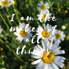 How reassuring that we don't have to hustle everyday to try and create the perfect environment. We don't have to survive thru each day trying to hold together the entire world. All because He is the Maker of ALL things | kimtuttle.com | inspirations & encouragement for your home