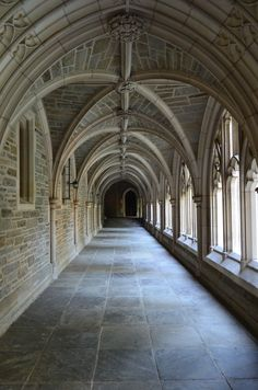 Stone arch walkway in Princeton. Beautiful Architecture, Architecture Details, Princeton Architecture, Grayson Hall, Ribbed Vault, Ivy League Style, Gallagher Girls, Boarding House, Princeton University