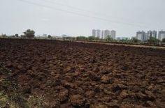 Community Farming project Hinjewadi, Pune 2016 - http://www.eventsnode.com/pune/event/community-farming-project-hinjewadi-pune-2016/