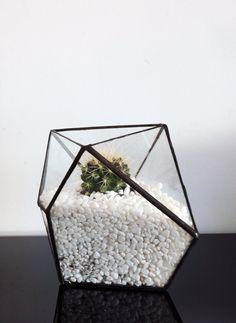 Hey, diesen tollen Etsy-Artikel fand ich bei https://www.etsy.com/de/listing/202840132/geometrische-terrarium-fur-luft-anlage