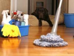 25 Truques de limpeza que você gostaria de ter descoberto antes - Receitas e Dicas Rápidas
