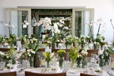 Fresh long table arrangement of white and green blooms in assorted jars and orchid plants.  Have your next event designed, styled and created by Vogue Weddings and Events.