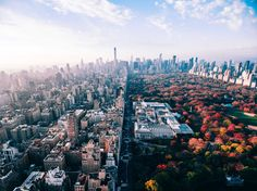 Worlds apart (Central Park) by Humza Deas | newyork newyorkcity newyorkcityfeelings nyc brooklyn queens the bronx staten island manhattan @lingkingman @ellistuesday @BastienGchr @Parccy #arteparaempresa #activate #sueña #IloveNY