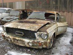 Ford Mustang 1967 | Kaufdorf graveyard Switzerland | luft-kraftwerk | Flickr