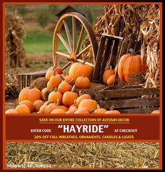 """Fall is here and we have just what you need to get prepared! Enjoy 20% OFF our entire Fall line with """"HAYRIDE"""" at checkout! Here is a quote we thought would get you in the mood!  """"Spring is beautiful, and summer is perfect for vacations, but autumn brings a longing to get away from the unreal things of life, out into the forest at night with a campfire and the rustling leaves.""""  What better way to brighten your home? We have the perfect idea by using our new scented candles! Shop our large…"""