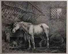 """""""When It's Time""""- Fantastic article on horse euthanasia and the difficult decision we must make as horse owners."""
